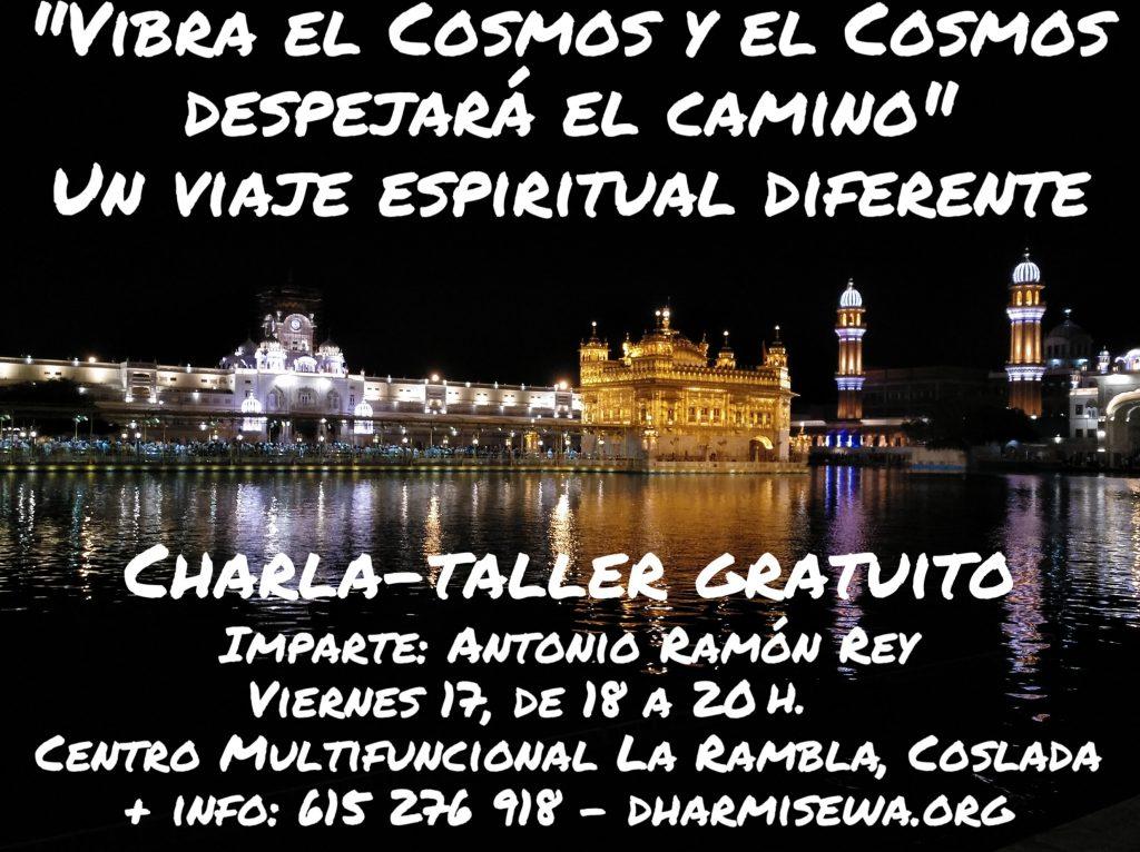 Vibra el Cosmos - cartel Dharmi Taller